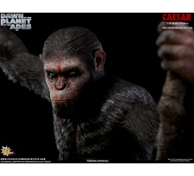 Dawn of the Planet of the Apes Regular Ceasar 1/4 Scale Statue 61 cm