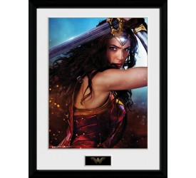 DC Comics Wonder Woman Defend 30 x 40 cm Collector Print
