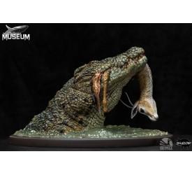 Museum Series Crocodylus Niloticus 1/24 Scale Diorama