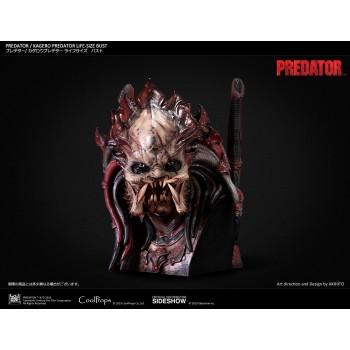 Predator: Kagero Predator Life Sized Bust by Akihito