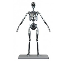Stainless Steel Mark I Endoskeleton 1/6 Scale Action Figure