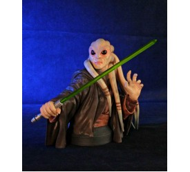 Star Wars Bust 1/6 Kit Fisto 18 cm