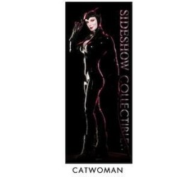 Sideshow DC Catwoman banner