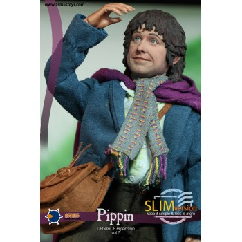 THE LORD OF THE RING PIPPIN SLIM VERSION 1/6 SCALE COLLECTIBLE FIGURE 20 CM